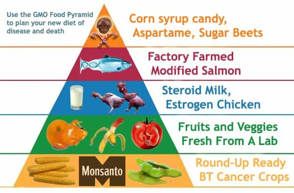 gmo--monsanto food pyramid