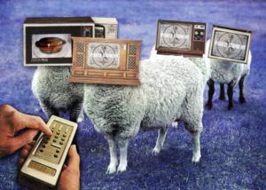 sheepletv